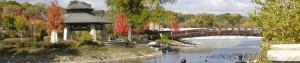 cropped-walton-island.jpg