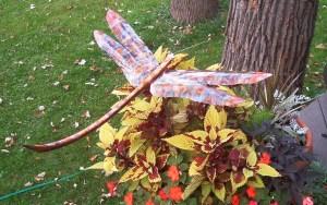 John and Marilyn Lamar dragonfly (3)